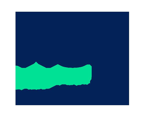 Fisa Group Logo